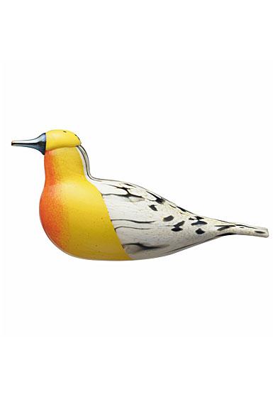 Iittala Toikka Blackburnian Warbler