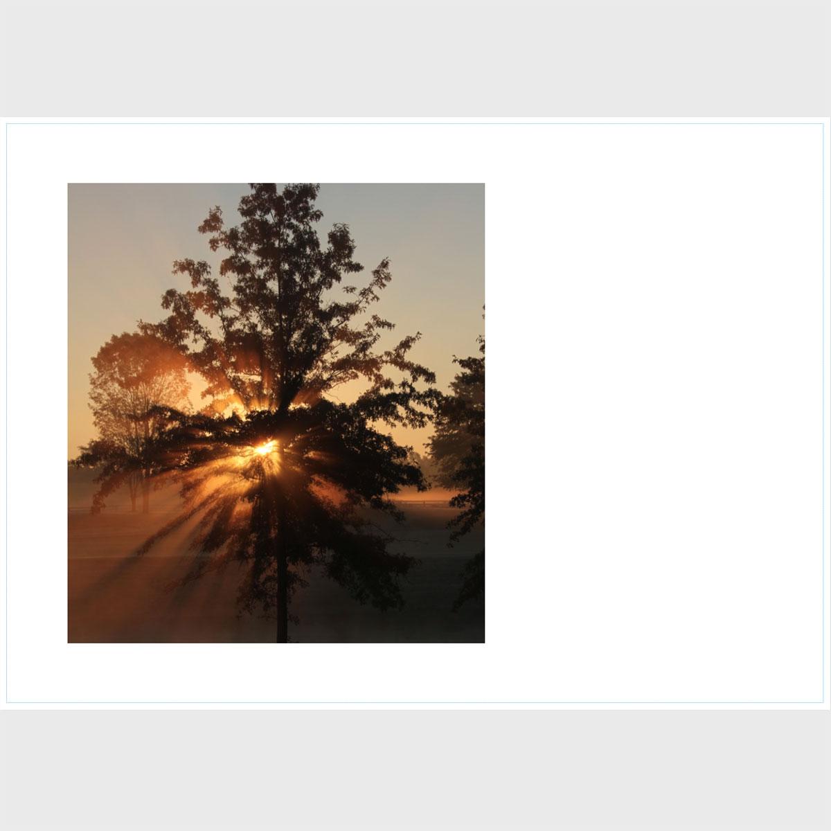Premium Greeting Card, Sunrise