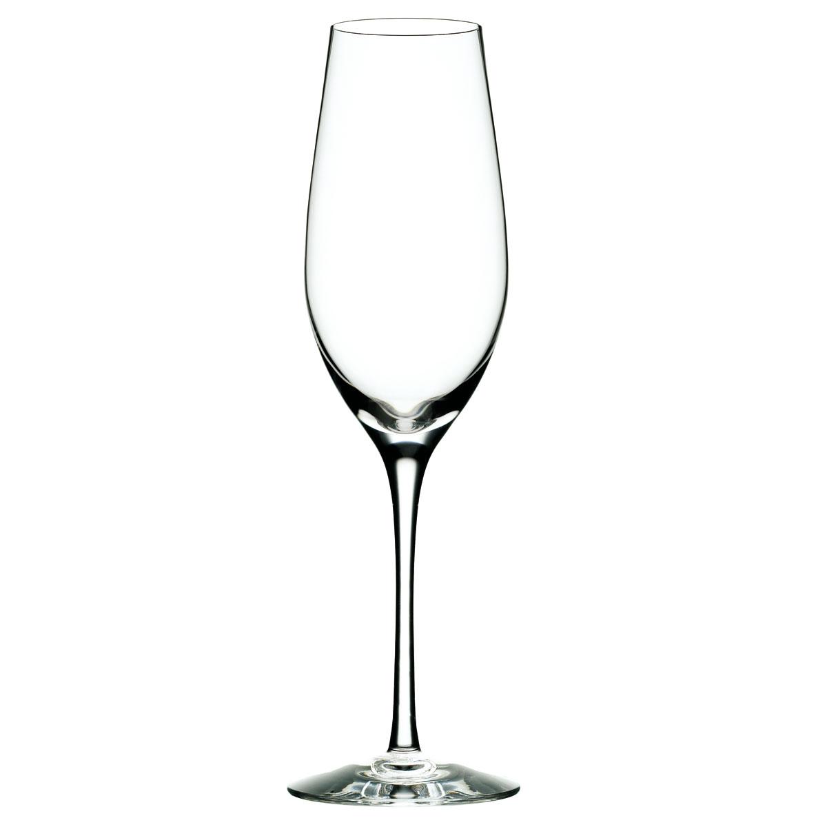 Orrefors Crystal Merlot Champagne, Single