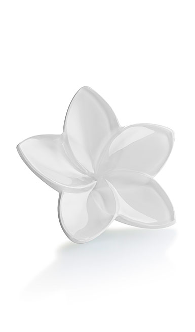 Baccarat Bloom White Flower Sculpture