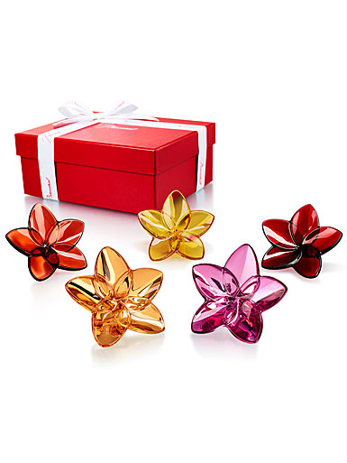 Baccarat The Bloom Collection Flower Power Boxed Set of Five