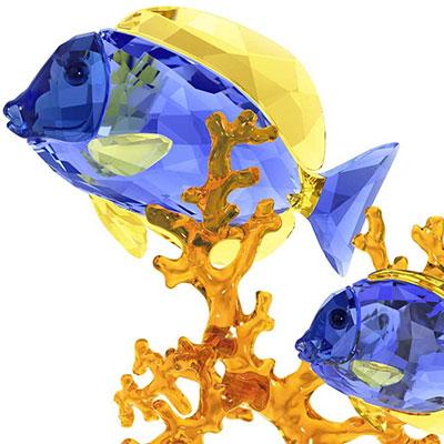 Swarovski Crystal, Paradise Doctorfish Couple Sculpture