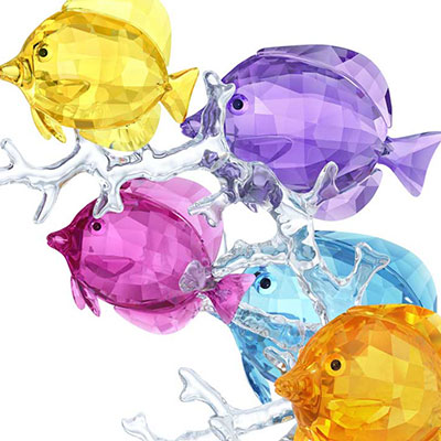 Swarovski Crystal, Paradise Rainbow Fish Family
