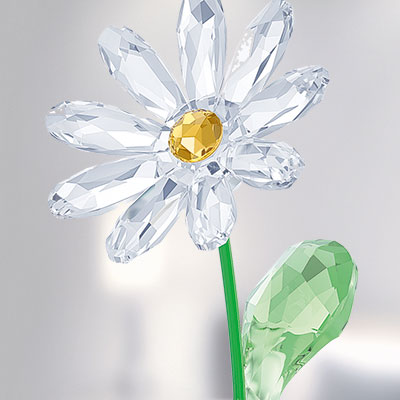 Swarovski Crystal, Flower Dreams Daisy