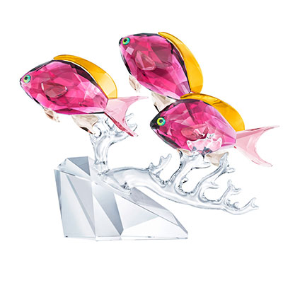 Swarovski Crystal Ocean Anthias Fish Trio