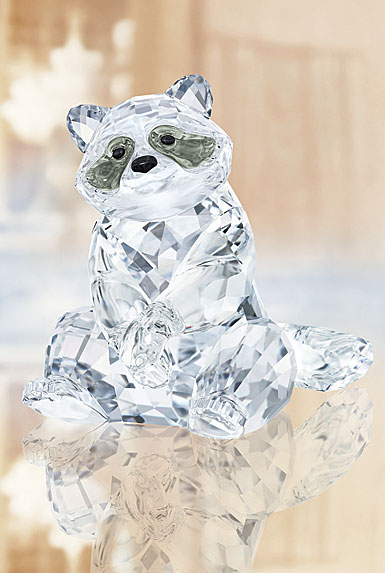 Swarovski Rare Encounters Raccoon