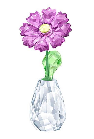 Swarovski Crystal, Flower Dreams Gerber Daisy