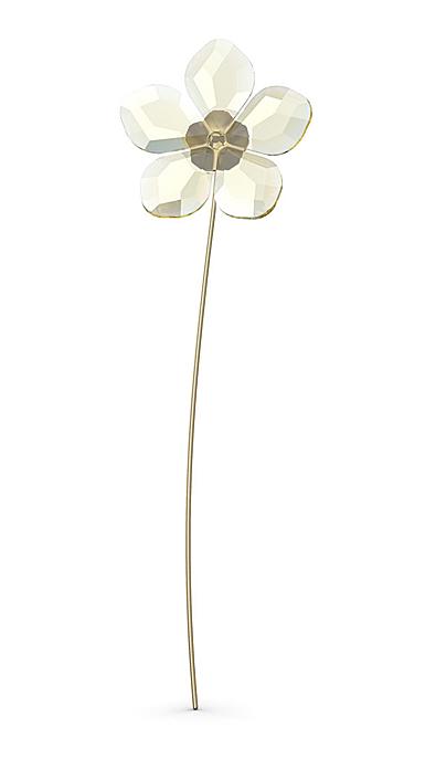 Swarovski Flowers Garden Tales Hellebore