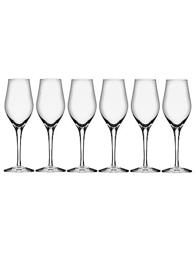 Orrefors Crystal Sense Sparkling Wine, Champagne, Set of 6