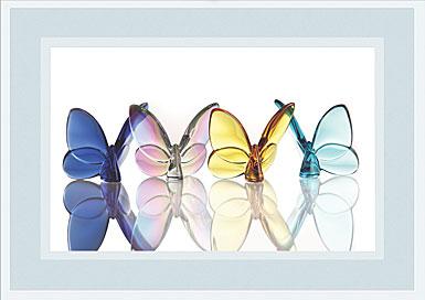Premium Greeting Card, The Butterflies