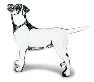 Baccarat Crystal, Labrador Dog