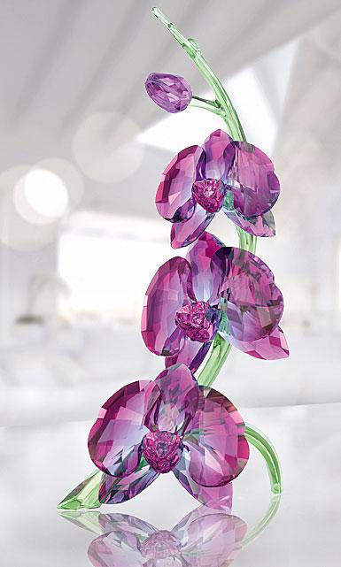 Swarovski Paradise Orchids