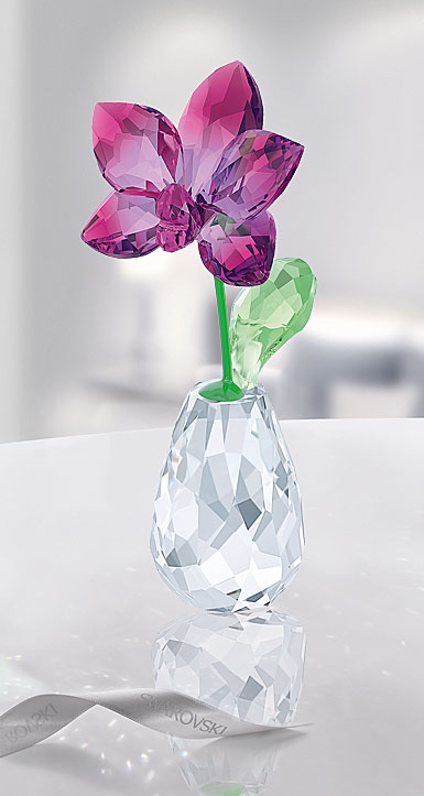 Swarovski Crystal, Flower Dreams Orchid