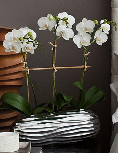 Donna Karan Lenox Sculpted Metal, Low Vase
