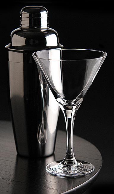 Schott Zwiesel Mondial Six Martini Glasses and Shaker Set