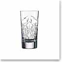 Schott Zwiesel Tritan Crystal, 1872 Charles Schumann Hommage Glace Longdrink Small, Pair