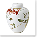 Wedgwood Hummingbird Lidded Vase 9.8""