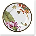 """Wedgwood Hummingbird Salad Plate 8"""""""