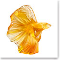 "Lalique Fighting Fish 10.5"" Sculpture, Amber"