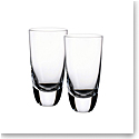 Villeroy and Boch American Bar Straight Bourbon Highball Tumbler Pair
