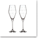 Villeroy and Boch Toys Delight Champagne Flute Pair