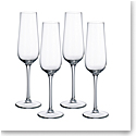 Villeroy and Boch Purismo Special Champagne Set of 4