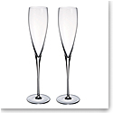 Villeroy and Boch Allegorie Premium Champagne Flute Pair