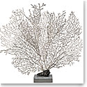 Michael Aram Fan Coral Sculpture Limited Edition of 136