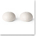 Aerin Sea Urchin Salt and Pepper Shakers, White