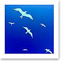 Premium Greeting Card, Birds