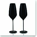 Rogaska Expert Y Black Champagne, Pair