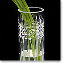 "Waterford Jeff Leatham Fleurology Tina 9"" Clear Bud Vase"