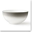 """Vera Wang Wedgwood Vera Degradee Soup, Cereal Bowl 6"""""""