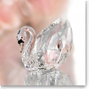 Swarovski Crystal, Swan, Medium