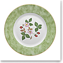 Wedgwood Wild Strawberry Accent Salad Plate, Single