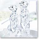 Swarovski Crystal, Meerkats