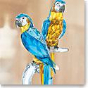 Swarovski Crystal, Paradise Macaws