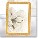 "Swarovski Crystal, Minera 4x6"" Picture Frame, Gold Tone"