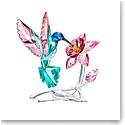 Swarovski Paradise Hummingbird