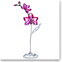Swarovski Large Flower Dreams, Orchid