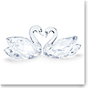 Swarovski Feathered Beauties Swan Couple