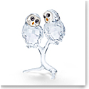 Swarovski Feathered Beauties Owl Couple