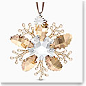Swarovski 2020 SCS Winter Sparkle Annual Edition Ornament