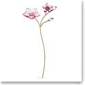 Swarovski Flowers Garden Tales Cherry Blossom
