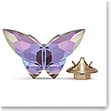 Swarovski Jungle Beats Magnet Violet Butterfly, Small