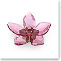 Swarovski Flowers Garden Tales Magnet Cherry Blossom Small