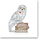Swarovski Harry Potters Owl, Hedwig