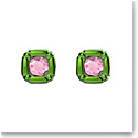 Swarovski Dulcis Stud Earrings, Green, Pair