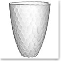 Orrefors Crystal Raspberry Vase Frost, Large