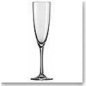 Schott Zwiesel Tritan Crystal, Classico Champagne Crystal Flute, Single